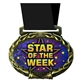 Star of the Week Medal in Jam Oval Insert | Star of the Week Award Medal