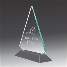 Pop-Peak diving acrylic award