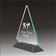 Pop-Peak martial arts acrylic award