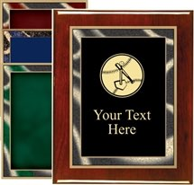 Piano Finish T-Ball Award Plaque