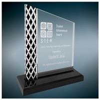 Diamond Ice Unite Acrylic Award