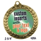 Custom Star & Laurel Insert Medal